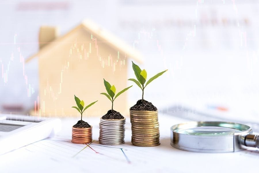 property investing,Investor Of Real Estate. The Plants Growing On Money Coin Stack